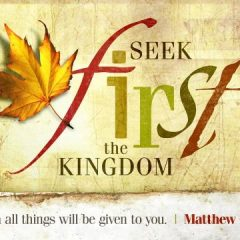 Seek first - seek-1st